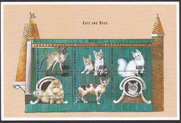 Tanzania, Scott #1988, Mint Never Hinged, Cats, Issued 1999 - Tanzania (1964-...)