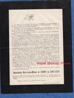 Document De 1903 - Château De MOUASSE Par CHATEAU CHINON ( Nièvre ) - Marie Louise Mélanie De CHAMPS De SAINT LEGER - Documents Historiques