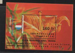 LOT 519 - PAYS BAS   BF N° 40** - FLEUR  LILIUM - Végétaux