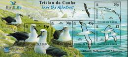 MDB-BK5-213-2 MINT PF/MNH ¤ TRISTAN DA CUNHA 2003 BLOCK ¤ BIRDS - BIRDS OF THE WORLD OISEAUX VOGELS - Marine Web-footed Birds