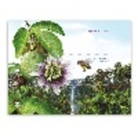 Portugal ** & Beekeeping  2013 (1) - Abeilles