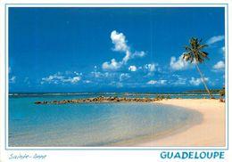 GUADELOUPE SAINTE ANNE PLAGE DU BOURG - Guadeloupe