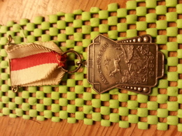 Medaille  / Medal - A.W.K Rijssen 12-8-1967 - The Netherlands - Pays-Bas