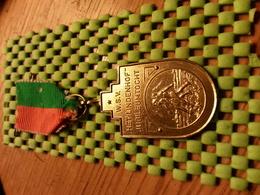 Medaille  / Medal -W.S.V Het Lindenhof Jubileumtocht Enschede 1976 - The Netherlands - Netherland