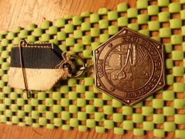 Medaille  / Medal  -W.S.V Nijverdal , Ten Cate 1973  - The Netherlands - Niederlande