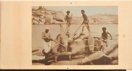 Egypte, 1920, Pêche Au Crocodile Sur Le Nil, Animée - Egypte