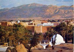 Gafsa - Tunisia - L'oasis - Formato Grande Viaggiata – E 4 - Cartoline