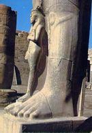 Louxor - Statue Der Nefertari - Gemahlin Ramses II - Formato Grande Non Viaggiata – E 4 - Cartoline
