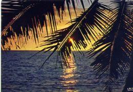 Haiti - Coucher De Soleil - Sunsert - Formato Grande Non Viaggiata – E 4 - Cartoline