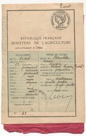 FRANCE / ALGERIE - Permis De Chasse Algérien 1924 + Autorisation De Chasser Dans Les Communaux TIARET - Historical Documents