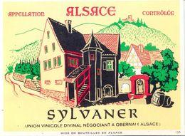 1 Etiquette Ancienne De VIN - SYLVANER - UNION VINICOLE DIVINAL A OBERNAI - Riesling