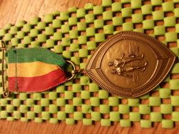 Medaille  / Medal -   Ulftse Avondvierdaagse 1977  / Walking  / Tennengauer   - The Netherlands - Other