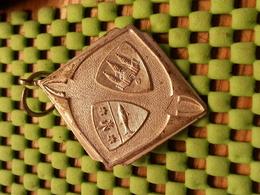 Medaille  / Medal - Deventer + 1965   / Walking  / Tennengauer   - The Netherlands - Netherland