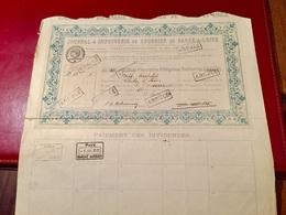 JOURNAL  &  IMPRIMERIE  Du  COURRIER  De  SAÔNE-&-LOIRE  ---------Certificat  D' Obligations  Nominatives - Industry