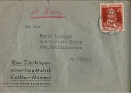 ! 1948 Beleg Aus Cottbus - Gemeinschaftsausgaben