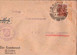 ! 1948 Beleg Aus Cottbus , Kreistierarzt, Sonderstempel - Gemeinschaftsausgaben