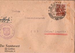 ! 1948 Beleg Aus Cottbus , Kreistierarzt, Sonderstempel - American,British And Russian Zone
