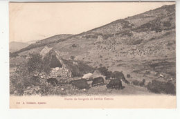 2B - Montagne Corse - Hutte De Bergers Et Brebis Corses (editeur A Ajaccio) - France