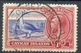 Cayman Islands 1935 1p Boobies Issue  #87 - Iles Caïmans