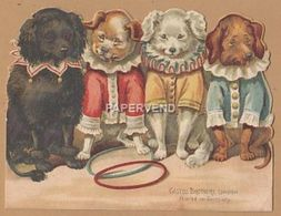 Greeting Card Cut Out   Four Performing Dogs   Egc139 - Old Paper