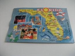 CARTA GEOGRAFICA FLORIDA  GULF OF MEXICO ATLANTIC OCEAN U.S.A. - Carte Geografiche