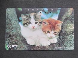 JAPAN NTT - GATTI CATS CHATS KATZEN - Gatos