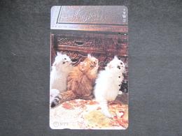 JAPAN NTT - GATTI CATS CHATS KATZEN - Katzen