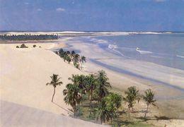 JERICOACOARA (FORTALEZA) - Dunas Na Praia - BRASIL - Fortaleza