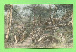 CPA FRANCE 77  ~  FORÊT De FONTAINEBLEAU  ~  203  Grotte Aux Loups, Sentier Au Travers Des Rocher   ( ND )  2 Scans - Fontainebleau