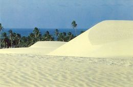 PARAIPABA (FORTALEZA) - Praia Da Lagoinha - BRASIL - Fortaleza