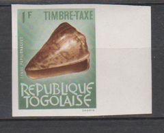 Togo 1964 Taxe 62  Coquillage Shell  Imperf *** MNH - Togo (1960-...)