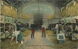 - Themes -ref-A316- Animaux - Chevaux - Cheval - Interieur D Ecurie A La Caserne - Casernes - Militaria - - Chevaux
