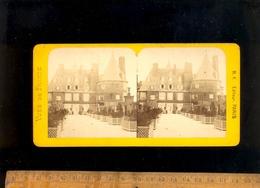 Photographie Stéréoscopique Stéréo Relief 3D Picture : L' Orangerie Du Chateau Grand Randan VICHY Allier - Photos Stéréoscopiques