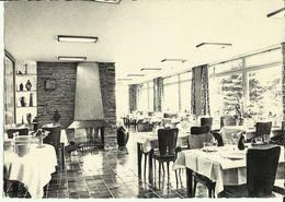 Haute - Bodeux -- Hôtel - Restaurant - Doux Repos - Salle à Manger.    (2 Scans) - Trois-Ponts