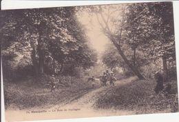 CPA -  34. HOULGATE - Le Bois De Boulogne - Houlgate