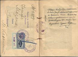 Passport Austria-Hungary 1913 Russian Visa Consular 2.25 Rub + Tax Stamps Wedding Mark - Historical Documents