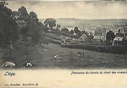 LIEGE - Panorama Du Chemin Du Chat Des Oiseaux - Luik