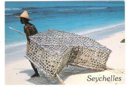 Seychellen - Seychelles - Fregate - Grande Anse - Nice Butterfly Stamp - Seychellen