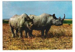 East Africa - Tanzania - African Wildlife - Rhino - Rhinoceroses - Nasshorn - Animal - Nice Stamp - Tansania