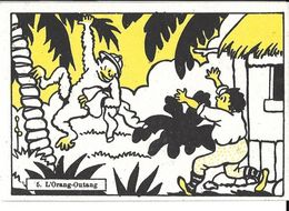 Chromo - Jouvence De L'Abbé Soury - N°5 L'orang-Outang - Chromos
