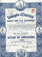 Compagnie  D'Électricité Du MIDI De La RUSSIE; Action De Jouissance - Russie