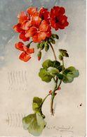 C. KLEIN - CATHARINA KLEIN - FIORI - FLOWERS - BLUMEN - FLEURS - GERANIUM - N 144 - Klein, Catharina