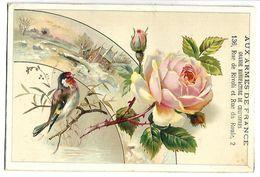 CHROMO - AUX ARMES DE FRANCE - Oiseau Et Rose - Chromos