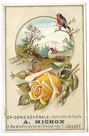 CHROMO - Epicerie Générale A. MICHON - CHAUNY - Oiseau Et Fleur - Chromo Gauffré - Chromos