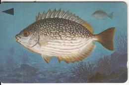 BAHRAIN(GPT) - Fish Of Bahrain/Streaked Rabbitfish, CN : 39BAHQ/B, Used - Bahrain