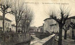 01 MONTLUEL - La Sereine Et Le Cours Laportelle - Montluel