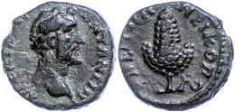 52 Moesia Inferior, Nikopolis, Æ (2,52g), Antoninus Pius, 138-161. Av: Kopf Nach Rechts, Darum Umschrift. Rev: Weinrebe, - Roman