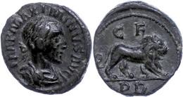 70 Thrakien, Deultum, Æ (3,55g), Maximinus Thrax, 235-238. Av: Büste Nach Rechts, Darum Umschrift. Rev: Löwe Nach Rechts - Roman