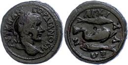 104 Thrakien, Anchialos, Æ (10,15g), Gordianus III., 238-244. Av: Kopf Nach Rechts, Darum Umschrift. Rev: Delphin Nach R - Roman