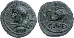 109 Thrakien, Deultum, Æ (3,67g), Gordianus III., 238-244. Av: Büste Nach Rechts, Darum Umschrift. Rev: Eros Reitet Auf  - Roman